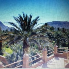 Отель Dar Pienatcha Марокко, Загора - отзывы, цены и фото номеров - забронировать отель Dar Pienatcha онлайн фото 10