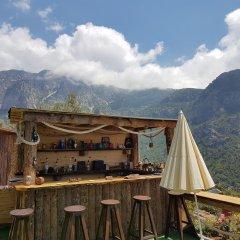 Отель Shiva Camp Патара гостиничный бар