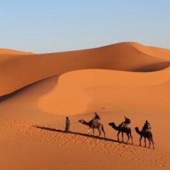 Отель Auberge Kasbah Des Dunes Марокко, Мерзуга - отзывы, цены и фото номеров - забронировать отель Auberge Kasbah Des Dunes онлайн фото 4