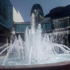 Гостиница Гостевой дом Маринка в Сочи отзывы, цены и фото номеров - забронировать гостиницу Гостевой дом Маринка онлайн бассейн