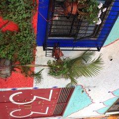 Hostel Mexico Df Airport Мехико балкон