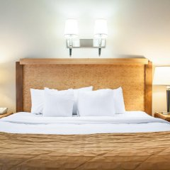 Clarion Hotel Buffalo Airport комната для гостей фото 4