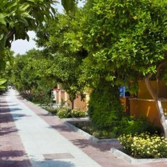 Hotel Ozlem Garden - All Inclusive фото 14