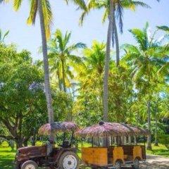 Отель Plantation Island Resort городской автобус
