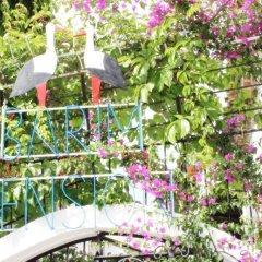 Barim Pansiyon Турция, Сельчук - отзывы, цены и фото номеров - забронировать отель Barim Pansiyon онлайн фото 8