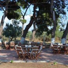 Geyikli Herrara Турция, Тевфикие - отзывы, цены и фото номеров - забронировать отель Geyikli Herrara онлайн фото 2