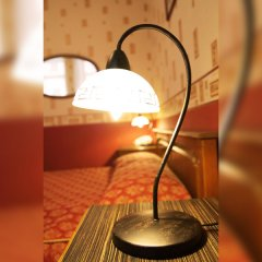 Гостиница Регина 3* Стандартный номер с различными типами кроватей фото 31