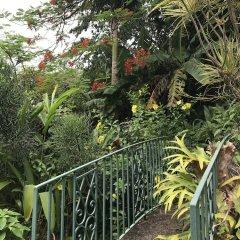 Отель Treetops Villa Порт Антонио фото 6