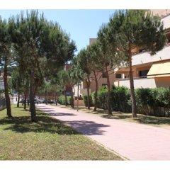 Отель Ficus 4 Испания, Льорет-де-Мар - отзывы, цены и фото номеров - забронировать отель Ficus 4 онлайн фото 3