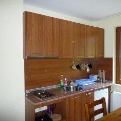 Апартаменты Ski Apartment In Castle Complex Пампорово в номере