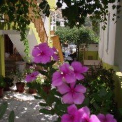 Zeybek 1 Pension Турция, Патара - отзывы, цены и фото номеров - забронировать отель Zeybek 1 Pension онлайн фото 24