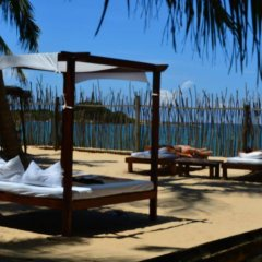Отель Coco Villa Boutique Resort Шри-Ланка, Берувела - отзывы, цены и фото номеров - забронировать отель Coco Villa Boutique Resort онлайн бассейн