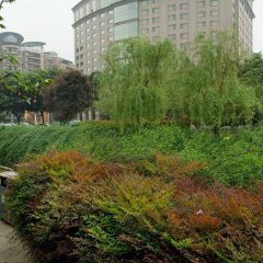 Millennium Hotel Chengdu фото 10
