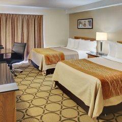 Отель Comfort Inn Ottawa East Канада, Оттава - отзывы, цены и фото номеров - забронировать отель Comfort Inn Ottawa East онлайн комната для гостей