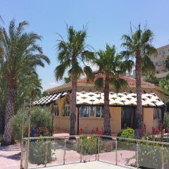 Oscar Resort Hotel in Girne, Cyprus from 84$, photos, reviews - zenhotels.com photo 7