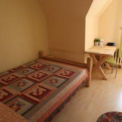 Отель Dom Sw. Stanislawa Польша, Закопане - отзывы, цены и фото номеров - забронировать отель Dom Sw. Stanislawa онлайн комната для гостей фото 2