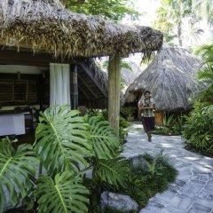 Отель Castaway Island Fiji фото 6
