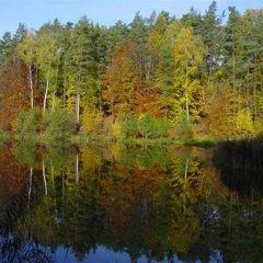 Hotel Ludmila Мельник приотельная территория