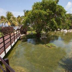 Отель Grand Oasis Cancun - Все включено Мексика, Канкун - 8 отзывов об отеле, цены и фото номеров - забронировать отель Grand Oasis Cancun - Все включено онлайн приотельная территория фото 2