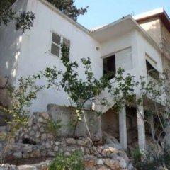 Отель The Artist's House Overlooking The Bay Of Haifa Хайфа фото 3