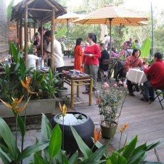 Отель Thien Thanh Boutique Хойан питание