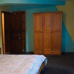 Отель Phoenix Family Hotel Болгария, Чепеларе - отзывы, цены и фото номеров - забронировать отель Phoenix Family Hotel онлайн фото 3