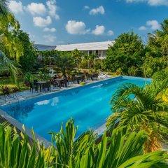 Отель Amra Palace бассейн