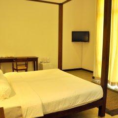 Отель Roman Lake Ayurveda Resort комната для гостей фото 5