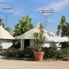 Отель Cuore Di Palme Флорида пляж