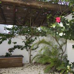 Отель Downtown Apartment Oasis 12 Мексика, Плая-дель-Кармен - отзывы, цены и фото номеров - забронировать отель Downtown Apartment Oasis 12 онлайн фото 4