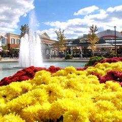 Отель TownePlace Suites Columbus Worthington США, Колумбус - отзывы, цены и фото номеров - забронировать отель TownePlace Suites Columbus Worthington онлайн помещение для мероприятий