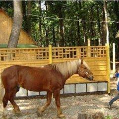 Гостиница Кул-Тау с домашними животными