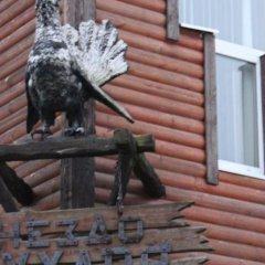 Gnezdo Gluharya Hotel с домашними животными