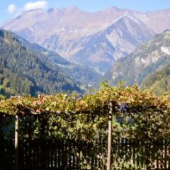 Отель Das Bergland - Vital & Activity Италия, Горнолыжный курорт Ортлер - отзывы, цены и фото номеров - забронировать отель Das Bergland - Vital & Activity онлайн
