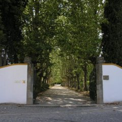 Отель The Wine House Hotel - Quinta da Pacheca Португалия, Ламего - отзывы, цены и фото номеров - забронировать отель The Wine House Hotel - Quinta da Pacheca онлайн парковка
