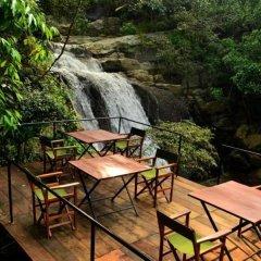 Отель Ella Jungle Resort Шри-Ланка, Бандаравела - отзывы, цены и фото номеров - забронировать отель Ella Jungle Resort онлайн