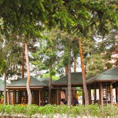 Отель Армения Армения, Джермук - отзывы, цены и фото номеров - забронировать отель Армения онлайн