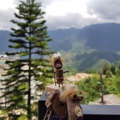 Check In Sapa Hostel and Coffee Шапа с домашними животными