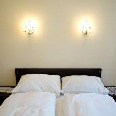 Отель Libušina Чехия, Карловы Вары - отзывы, цены и фото номеров - забронировать отель Libušina онлайн комната для гостей фото 4