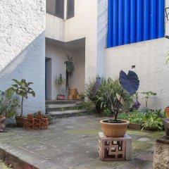 Отель Casa Habitación San Angel Мехико фото 2