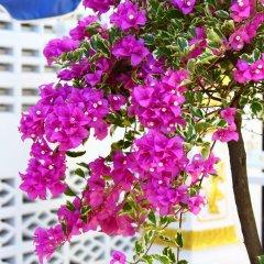Отель P.K. Residence Таиланд, Пхукет - отзывы, цены и фото номеров - забронировать отель P.K. Residence онлайн фото 7