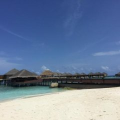 Отель Club Blu Мальдивы, Мале - отзывы, цены и фото номеров - забронировать отель Club Blu онлайн приотельная территория