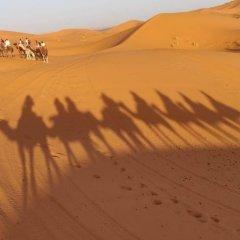 Отель Takojt Марокко, Мерзуга - отзывы, цены и фото номеров - забронировать отель Takojt онлайн удобства в номере