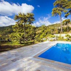Villa Serenity Турция, Патара - отзывы, цены и фото номеров - забронировать отель Villa Serenity онлайн бассейн фото 5