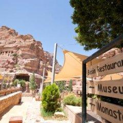 Отель Petra Guest House Hotel Иордания, Вади-Муса - отзывы, цены и фото номеров - забронировать отель Petra Guest House Hotel онлайн фото 2