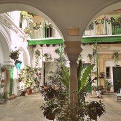 Отель Apartamentos Jerez Испания, Херес-де-ла-Фронтера - отзывы, цены и фото номеров - забронировать отель Apartamentos Jerez онлайн фото 25