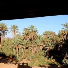 Отель Riad Tagmadart Ferme D'hôte Марокко, Загора - отзывы, цены и фото номеров - забронировать отель Riad Tagmadart Ferme D'hôte онлайн фото 6
