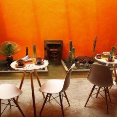 Отель Coyoacan-inn Guesthouse Мексика, Мехико - отзывы, цены и фото номеров - забронировать отель Coyoacan-inn Guesthouse онлайн фото 13