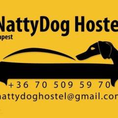 Отель Nattydog Hostel Венгрия, Будапешт - отзывы, цены и фото номеров - забронировать отель Nattydog Hostel онлайн с домашними животными