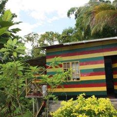 Отель Nature in portland Ямайка, Порт Антонио - отзывы, цены и фото номеров - забронировать отель Nature in portland онлайн фото 4